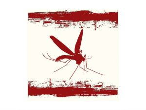 today-world-malaria-day-2012_2542012
